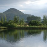 Hillview Fishery