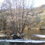 River Teme in winter, Ludlow