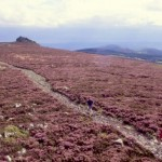 Devils Chair, The Stiperstones